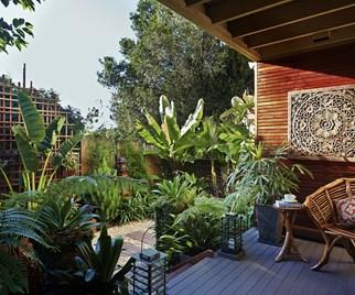 Outdoor tropical garden